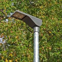 LED-Strassenlaterne vor grünem Baum