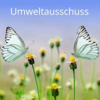 Schmetterlinge links und rechts auf zwei Blüten